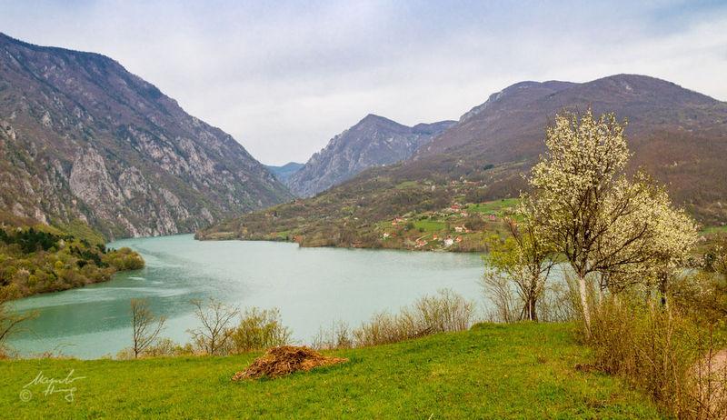 Prirodne vrijednosti NP Drina