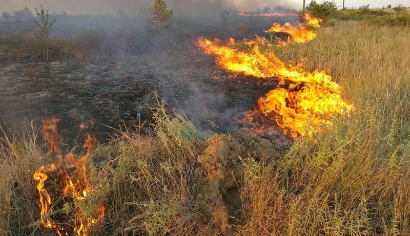 Lokalizovan požar u mjestu Gaj